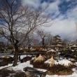 霧ヶ峰から諏訪高島城