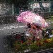 雨の日の金曜日