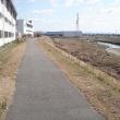 散歩の風景、堤防の道
