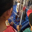 獣医体験と水族館