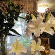 シャンソン歌手リリ・レイLILI LEY シャンソン稽古場 ユリの花の香り 芝パークホテル シャンソンコンサートに向けて