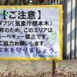 【大阪府】大阪城