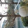 旧社会保険庁の「球」