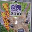 奈良マラソン 10k当選