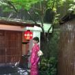 新緑の季節(^_-)-☆