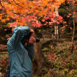 新津中野邸の紅葉 ④