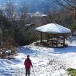 2017/12/10(日) 小佐波御前山