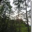 10月の手しごと展~ひのきの森でひとやすみ~