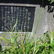 四季折々828  初秋の北海道旅行4