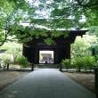 runで鎌倉まで。炎天下のrunは危険です。