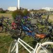 自転車の列