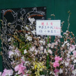 折返~櫻の再園6