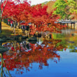 奈良の秋 散策