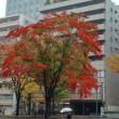 NHK仙台放送局見学