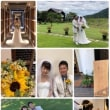 CAVE D'OOCI Wedding...18.7.28
