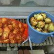 玉ねぎの収穫時期です。