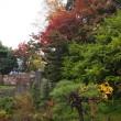 金沢城公園内にある玉泉院丸や二の丸辺りなどの紅葉などの紹介。