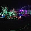 茨城県立フラワーパーク イルミネーション