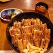 宮島口 うえのの穴子丼