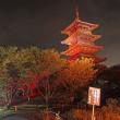 備中国分寺の赤米ライトアップ 6日目