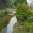 雨~~(^_^;)