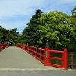小田原城を新緑の中で