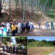 2018.5.19 里山再生、竹林伐採