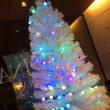 クリスマス               鎌倉店