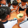 10月12日 聖マリア幼稚園で、日本茶教室