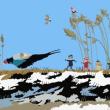 国鳥を描く