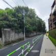 小石川植物園の裏通りを往く。