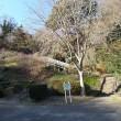 急に忙しくなっちゃって・・・やっと鎌倉中央公園一回り