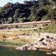 福知山線の特急列車「まつかぜ」