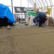 寒い日  玉ネギの種植え  陽太を預かる  恐竜DVD