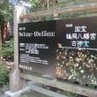 鎌倉国宝館で特別展「国宝鶴岡八幡宮古神宝」をみて