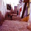 世界遺産の町グアナファト