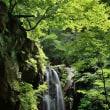 「赤 滝」(栃木県)