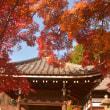 2017 紅葉散策4 善峯寺