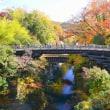甲斐の奇橋 猿橋の紅葉