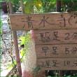 半年ぶりの京都トレイル 東山コース