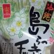 沖縄『島らっきょうチップス』