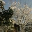よく降る雪のさなかの忘年会