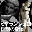 ミケランジェロと理想の身体 at 国立西洋美術館