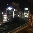 〈マヤ暦 K75〉摩耶の奇跡の再会 〜タスマニアの景子ちゃん〜