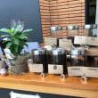 NIIGATA COFFEE LABO 新潟県立植物園温室1階