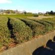 富士地域農林事業視察