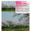 埼玉-653 青毛堀川(青葉)①