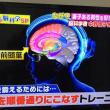 ノルディックウォーキングしながら脳の前頭葉を鍛える