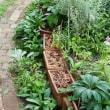 庭も衣替え