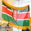ケニア大使館にいってきました